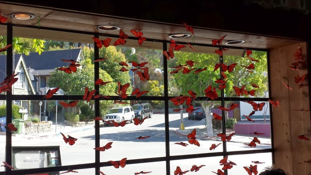 Butterflies in the window of Beachwood Cafe.